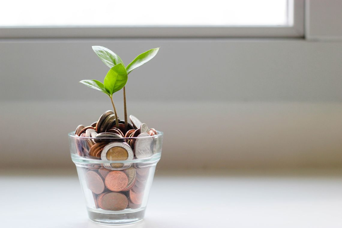 A plant grows from a glass cup of coins.